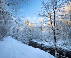 Winter time... by KariLiimatainen