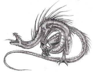 Wan Mei dragon by dragonicwolf