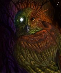 Seer by Camelid