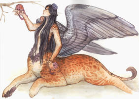 Sphinx Centaur - collab by Camelid