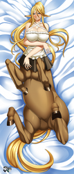 COMMISSION: Centorea Dakimakura Front Version by jadenkaiba