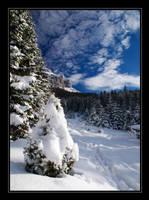 Winter surprise by joffo1