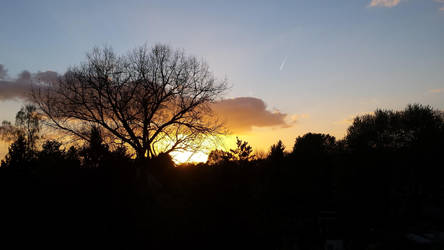 Sonnenuntergang by dguender