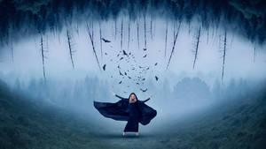 Crows by JackieCrossley