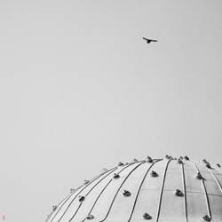 Celestial Dome by daYavuz