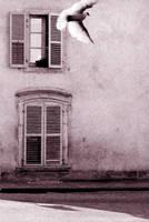 French Street by speedonl
