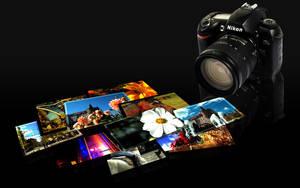 Nikon by Couiche