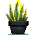 Snake plant by Sindonic