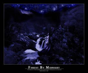 Forest By Midnight by indigo12