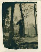 PRINT cyanotype 013 by charlesguerin