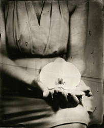 ambrotype 012 by charlesguerin
