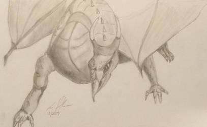 Dragon Sketch and Study by ravinsilverlock
