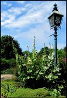 Garden by Candyflosser