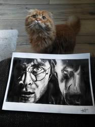 Harry Potter vs Voldemort  by ViviCastle