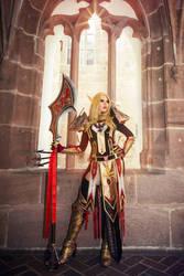 World of Warcraft - Paladin Tier 2 by KamuiCosplay