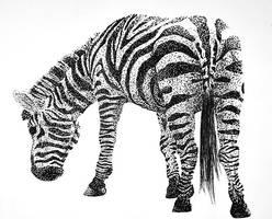 Zebra by RoisinArt