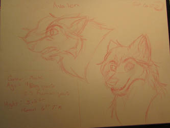 Avalon character doodles by RunWildArts