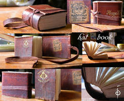 Hat Band Book by myceliae
