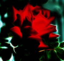 Fractal Rose2 by path2000