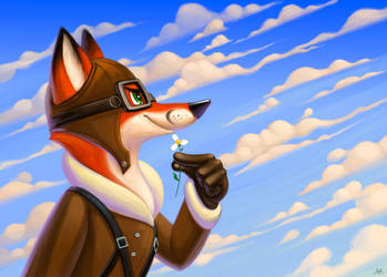 Fox Aviator by nik159