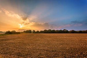 Sunset Ploughed by snomanda