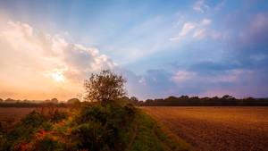 Sunset by snomanda
