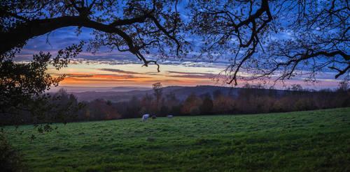 Leith Hill by snomanda