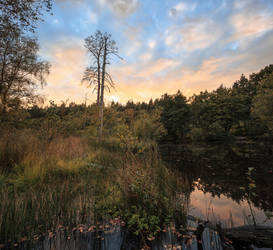 Lakeside by snomanda