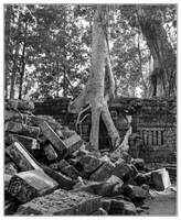 Angkor Thom by Roger-Wilco-66