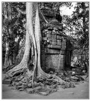 Angkor Thom #2 by Roger-Wilco-66