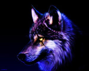 Jawox-DragonQueen's Profile Picture