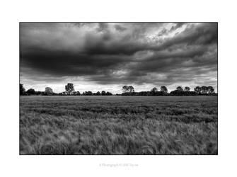 stormy field by e1sbaer