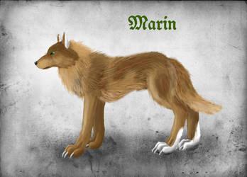 Marin by WinterWerewolf