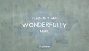Wonderfully Made by Blugi