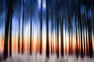Timberland by KrisVlad