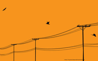 Wire Birds -widescreen- by Vyano-Xiaah