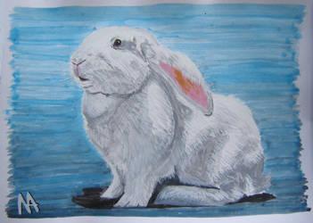 Rabbit: Duszek (Ghost: second version) by M-J-M-A