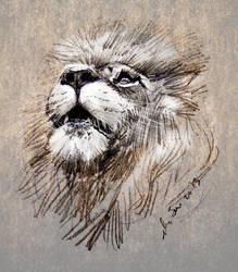 mandatory daily cat sketch  2020 by nosoart