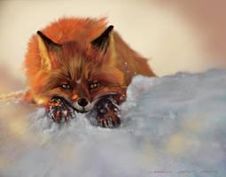 Firefox PS by nosoart