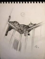 sketch 4811 by nosoart