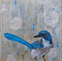 Young Blue Jay Serenade by TempestErika