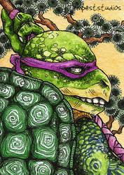 TMNT Donatello / ACEO by TempestErika