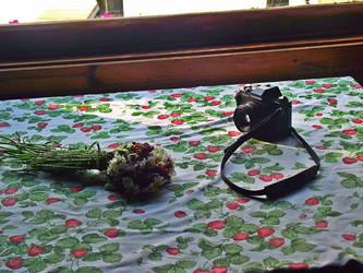 Strawberry Tablecloth by mkmkmkzzzz