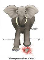 Elephant Vs. Mouse by AgustinGoba