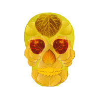 Aspen Leaf Skull 1 by AgustinGoba