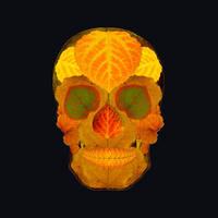 Aspen Leaf Skull 2 Black by AgustinGoba