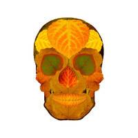 Aspen Leaf Skull 2 by AgustinGoba