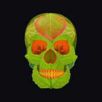 Aspen Leaf Skull 5 Black by AgustinGoba