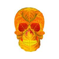 Aspen Leaf Skull 6 by AgustinGoba
