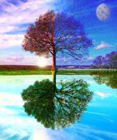Four Seasons by Yamilisa